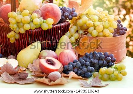 Autumn fruit, autumn organic fruits on table - autumn harvest  Royalty-Free Stock Photo #1498510643