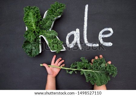 Curly-leaf kale cabbage inside letter K shaped plate, chalk inscription KALE on blackboard, child's hands holding fresh greens. Healthy food concept.  Flat lay or top view. #1498527110