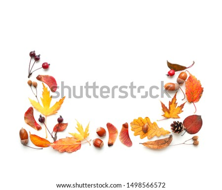 Autumn composition. berries, leaves and acorns on white background. Autumn mood. Fall season, thanksgiving and halloween holiday concept. Flat lay, top view, copy space #1498566572
