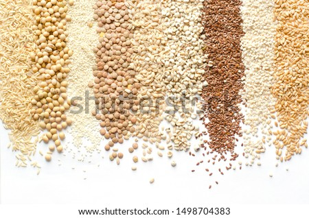 Variety kinds of natural organic cereal or grain seed in stripe shape on white background consisted of rice,soybean,sesame,lentils,wheat,barley,job's tear,flax seed,and pearl barley  #1498704383