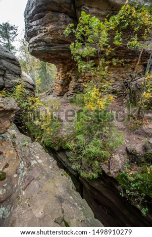 Autumn in the forest and rocks. outdoor recreation in the fall. #1498910279