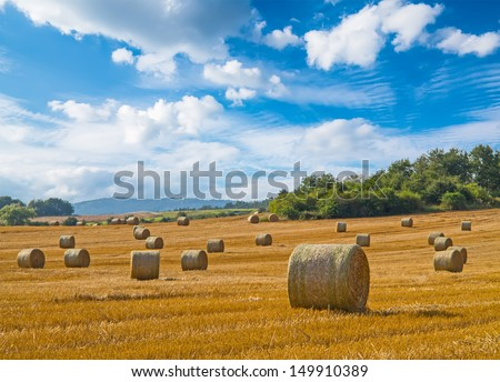 Beautiful landscape with straw bales in end of summer #149910389