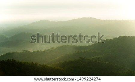 Forested mountain slope in low lying cloud with the evergreen conifers shrouded in mist in a scenic landscape view #1499224274