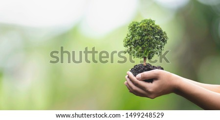 Tree planting on volunteer family's hands for eco friendly and corporate social responsibility campaign concept #1499248529