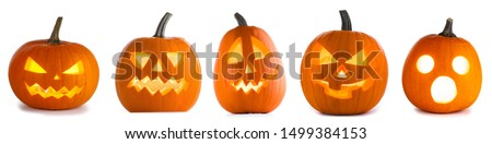 Five Halloween Pumpkins isolated on white background #1499384153
