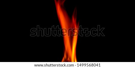Fire texture isolated on black background. Fire flames on black background. Fire patterns. Texture of flames throughout the space. Red flames up close. The background with flames of fire. #1499568041