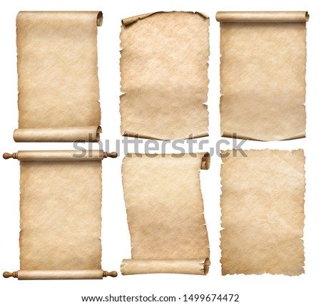 old papers or parchment six scrolls or parchments set isolated #1499674472