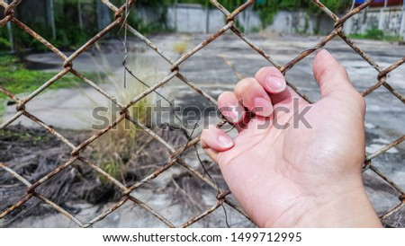 palm hand with finger pulling  rust metal cage,  wire fence #1499712995