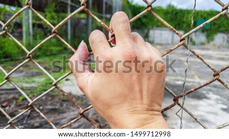 one back hand holding on metal net wall, wire fence #1499712998