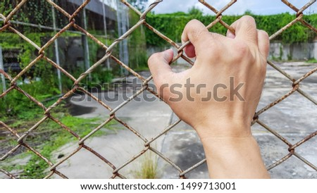 one hand holding tight on rusted metal net, wire fence #1499713001