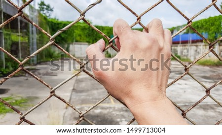 one hand holding on rusted metal net, wire fence #1499713004