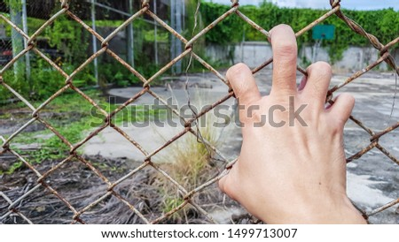 one hand with spread out fingers holding metal cage, wire fence #1499713007