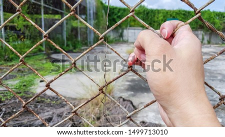 one side right hand holding metal net, wire fence #1499713010
