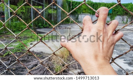 right back hand with spread out fingers holding metal net cage, wire fence #1499713013