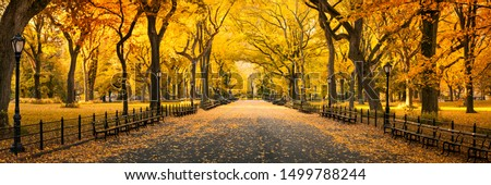 Central Park in New York City during autumn season #1499788244