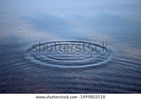 Water drop falling into water making a perfect concentric circles #1499802518
