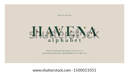 Elegant alphabet letters serif font and number. Classic Lettering Minimal Fashion. Typography fonts regular uppercase, lowercase and numbers. vector illustration Royalty-Free Stock Photo #1500011051