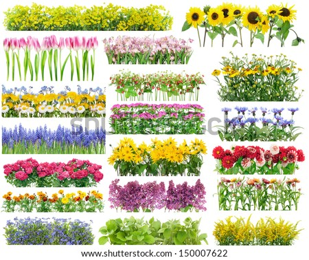 Summer flowers bed and floral borders set collage. All full size images You can find in my portfolio #150007622