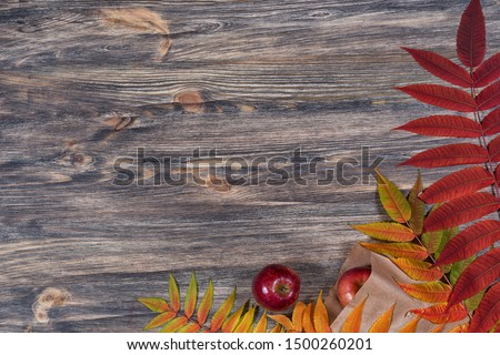 Dark old wooden background with beautiful bright colorful autumn leaves and red apples arranged in a frame. Vintage fall mockup. Border design. Top view. Flat lay.  #1500260201