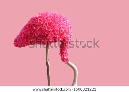 Pink flamingo with flower coating on pink background #1500321221