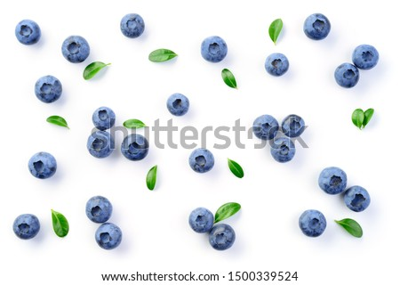 Blueberry isolated. Blueberries background. Blueberry on white background. With leaves.  #1500339524