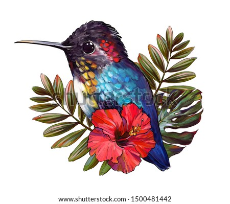 Hummingbird bird, tropical bird with exotic monstera leaves and hibiscus flowers isolated on white background. Hummingbird hand-drawn illustration. Tropical flowers, t-shirt print, cute animal, sketch