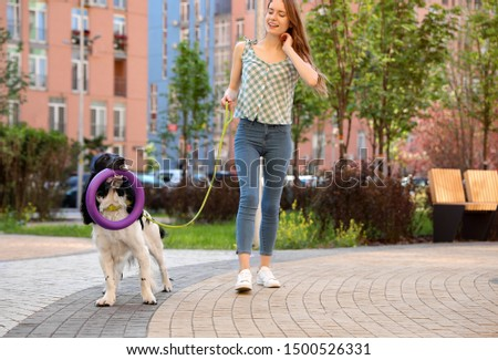 Woman playing with her English Springer Spaniel dog outdoors #1500526331