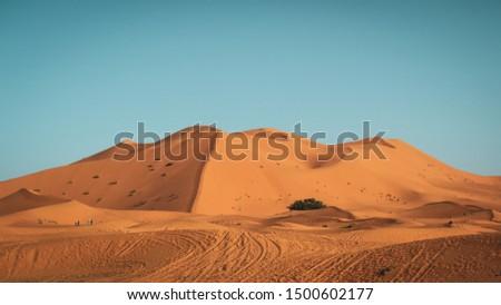 Golden dunes in the Moroccan Sahara. #1500602177