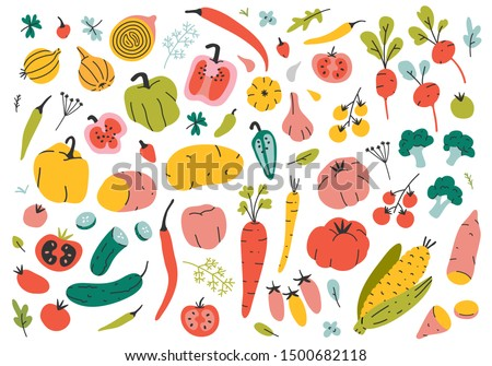 Collection of hand drawn vegetable illustrations isolated on white background. Bundle of fresh delicious vegan diet vegetarian products, wholesome healthy food, cooking ingredients. Flat cartoon style Royalty-Free Stock Photo #1500682118