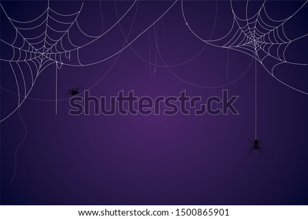 Spider and cobweb background. The scary of the halloween symbol Isolated on blue and purple vector illustration. #1500865901