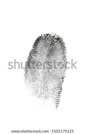 fingerprint pattern isolated on white #1501179221