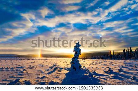 Sunset winter nature horizon landscape. Winter sunset silhouette view. Winter sunset horizon view. Winter sunset nature snow landscape #1501535933