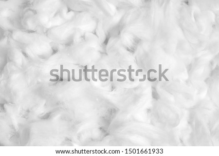 Cotton fiber texture background, white fluffy natural material #1501661933