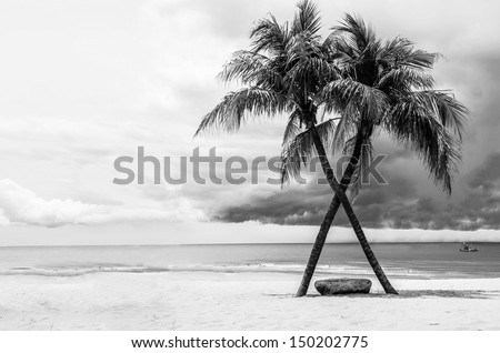 Black & White view of Beautiful beach with palms, Thailand Royalty-Free Stock Photo #150202775