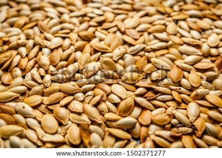 Roasted pumpkin seeds close up #1502371277