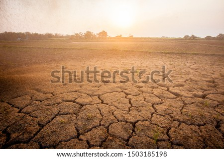 The ground is cracked. The area is dry. Condor has sunshine. Global warming. #1503185198