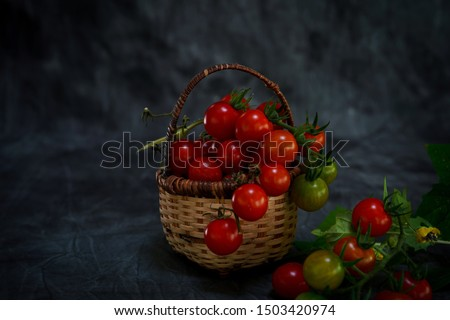 Still life Fresh homegrown cherry tomatoes on dark moody background, selective focus #1503420974