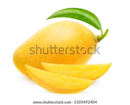 Isolated yellow mango. One whole mango fruit and two slices isolated on white background with clipping path #1503492404