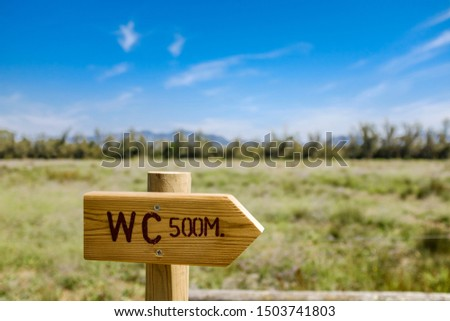 Toilet signal wooden arrow on a green outdoor landscape on a blue sky