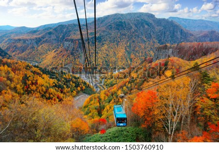 A breathtaking aerial view from a cable car of Kurodake Ropeway flying over colorful autumn forests on the mountainside in Sounkyo Gorge in Daisetsuzan National Park, in Kamikawa, Hokkaido, Japan #1503760910