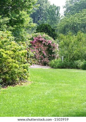 In the Garden #1503959