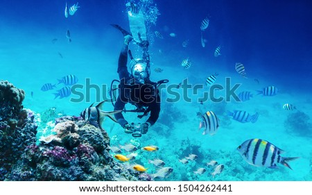 diver swimming underwater near coral reefs and fish and takes a picture with camera