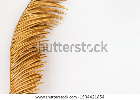 Gold spray painted natural leaf of palm tree on white background. Top view, copy space. Minimal concept