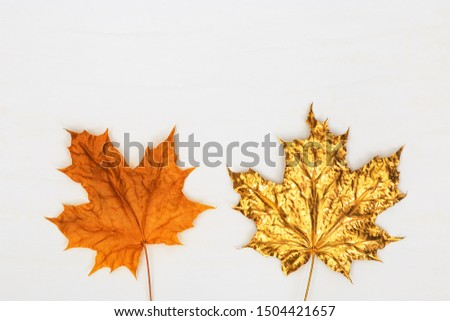Nature maple leaves gold painted, different fall leaves kit natural yellow and metallic golden colors.