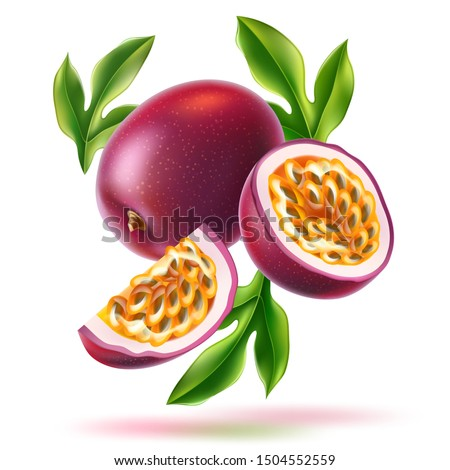 Realistic passionfruit with slices, seeds and green leaves. Fresh exotic fruit for healthy dieting. Juicy raw tropical fruit with yellow seeds. Vector purple fruit full of vitamins. #1504552559