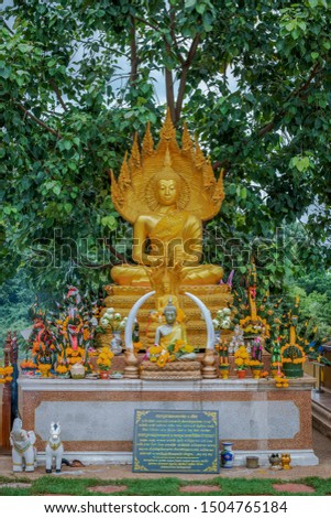 12 Aug 2019 , UdonThani Thaland ,Wat Pa Kham Chanod Buddha images that people worship #1504765184