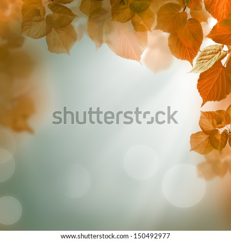 Abstract autumn background with leaves and evening light