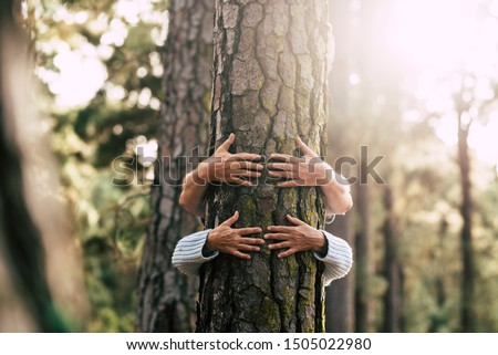 Environment people save the planet and stop deforestation concept with hidden couple of senior hugging with love an old big tree pine in  the forest -defocused wood in backgorund #1505022980