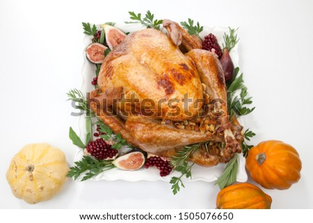 Garnished traditional roasted turkey for Thanksgiving, garnished with fresh figs, pomegranate, and herbs. On white background with pumpkins. #1505076650