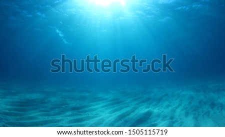 Underwater background photo in sea